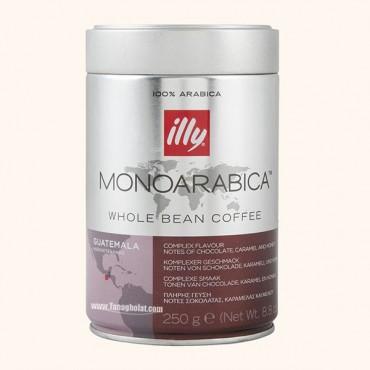 دانه قهوه ایلی مدل گواتمالا