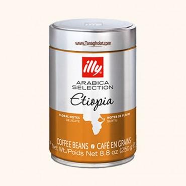 دانه قهوه ایلی مدل اتیوپی